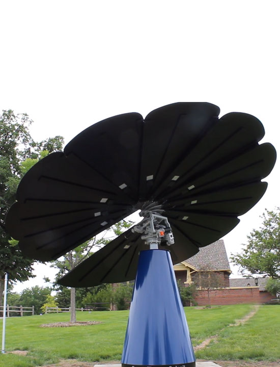 Smartflower Blooms for the First Time on UNC's Campus